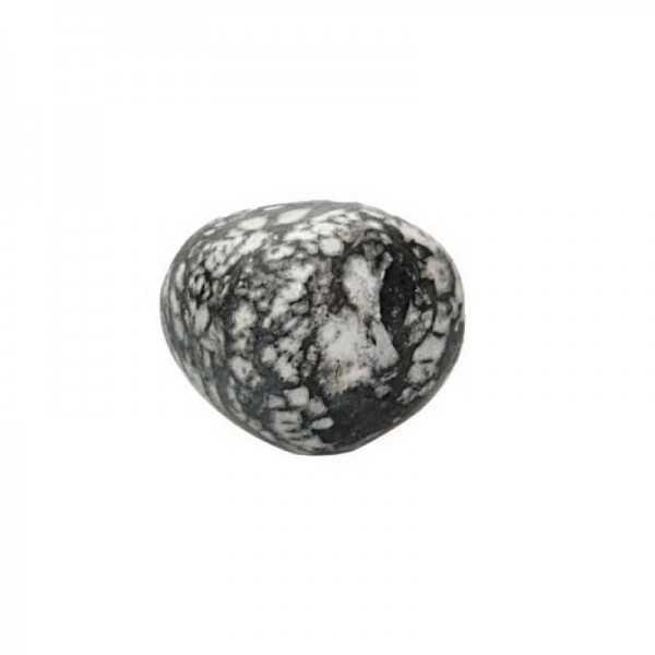 Chrysanthemen stein