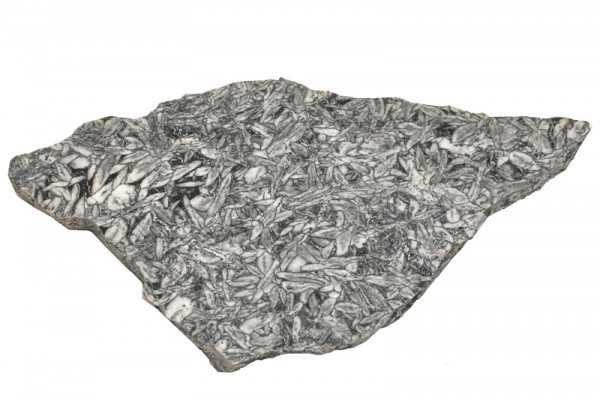 Magnesit Pinolith Platte