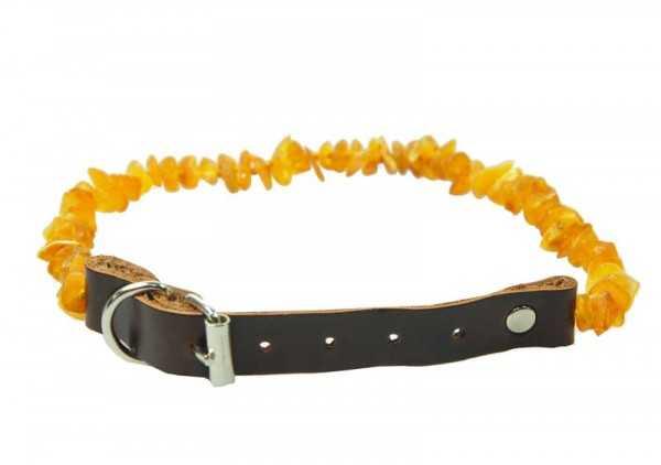 Bernstein Zeckenhalsband für Hunde und Katzen mit Lederschließe